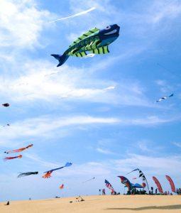 wright-kite-festival_0