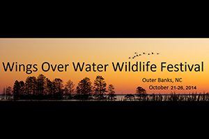 wings-over-water-wildlife-festival