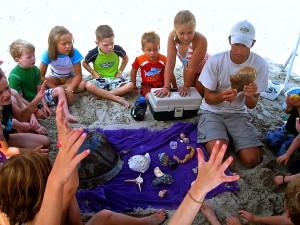 Various Beach Finds Explained - Courtesy of Corolla Ocean Rescue