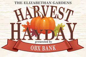Harvest Hayday HHD poster 2013