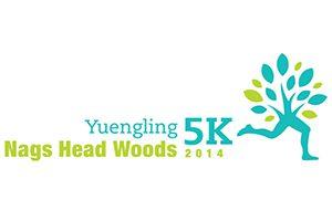 yuengling-5k-obx-running