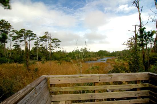 Outer Banks Sandy Run Park Kitty Hawk