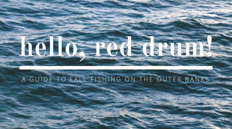 A Guide to Fall Fishing on the Outer Banks
