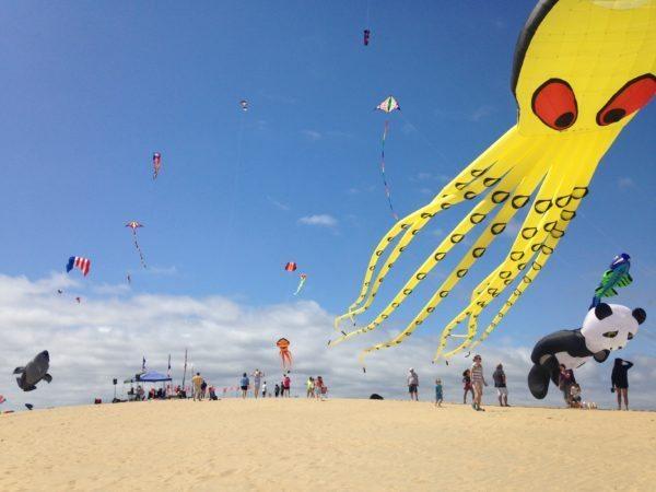 Rogallo Kite Festival 2018